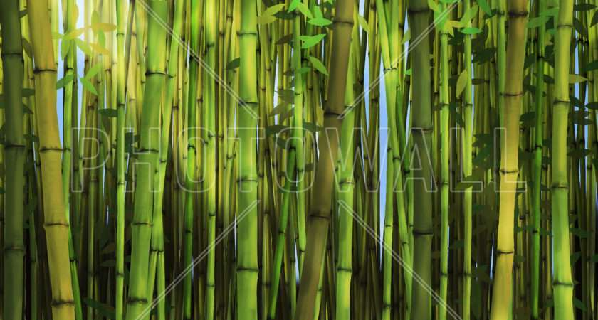 Bamboo Forest Wall Mural Photowall