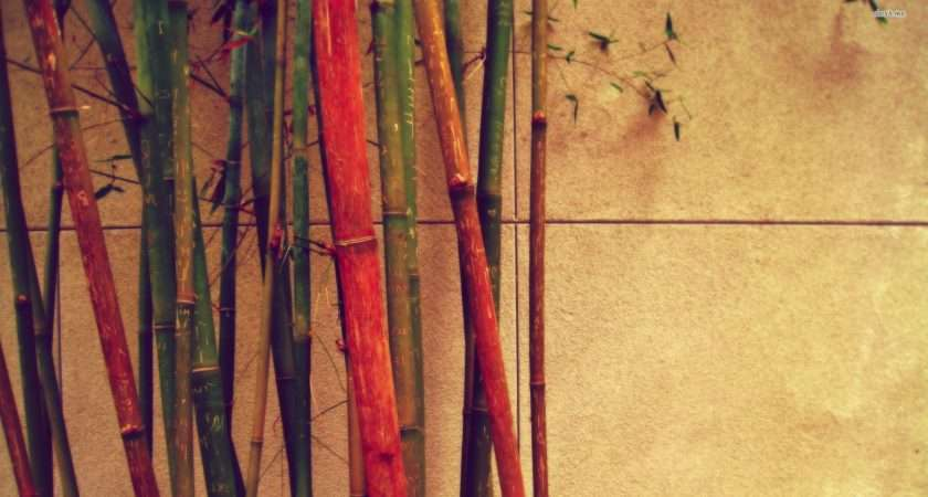 Bamboo Wood Zone