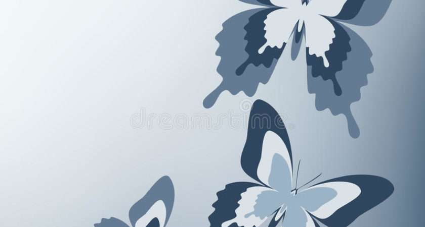 Beautiful Gray Butterfly Vector