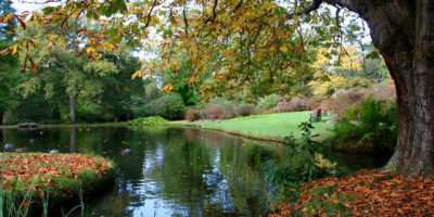 Best Gardens World Part Exbury New Forest England