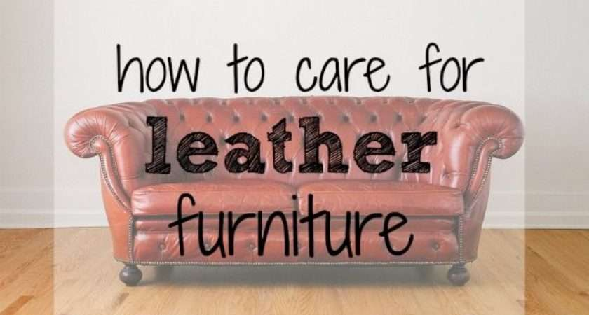 Best Leather Care Cleaning Maintenance