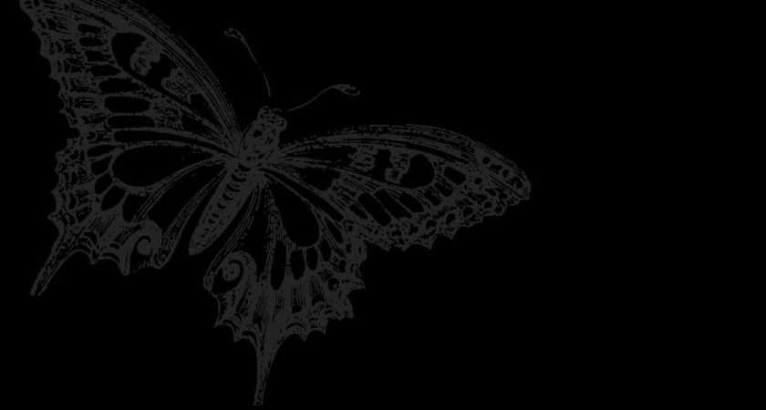 Black Butterfly Wallpapersafari