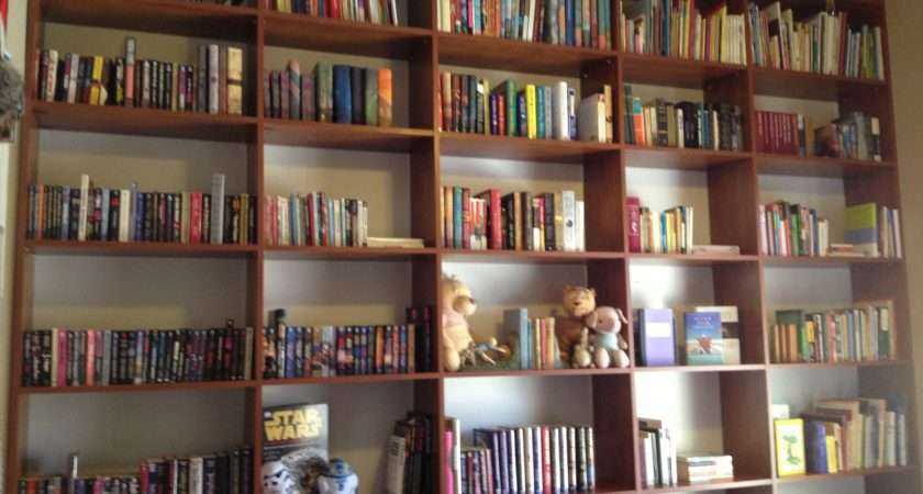 Bookshelves Library Plus Bookcase Wall