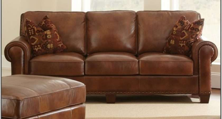 Brown Leather Polish Sofa Innovative Cleaning