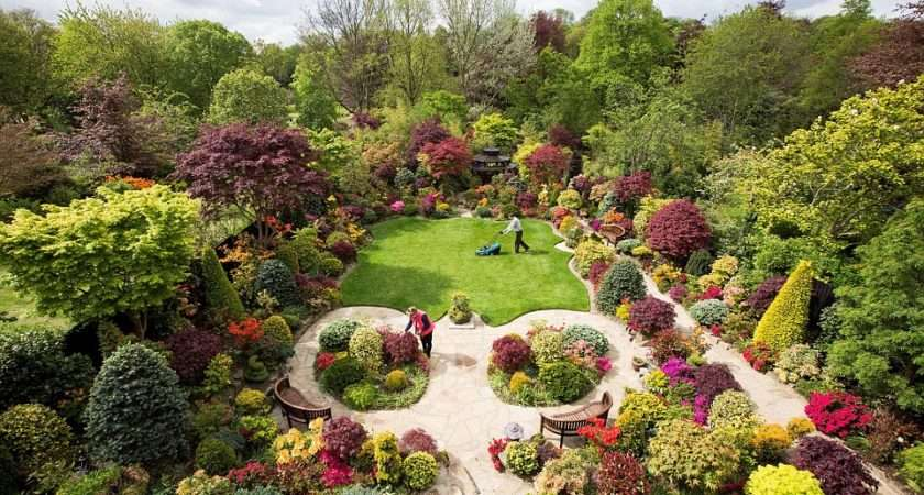 Bursting Vivid Colours Garden Boasts Japanese Maples