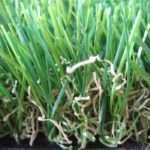 Buy Landscaping Artificial Turf Years
