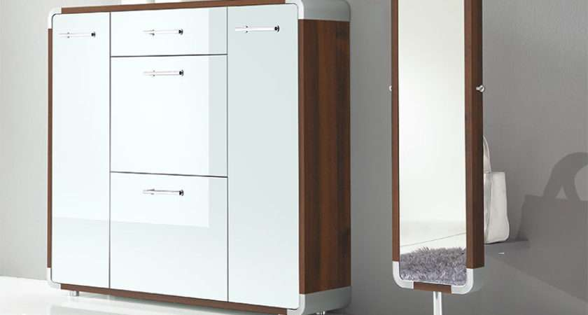 Door Contemporary Shoe Cabinet Drawer Choice