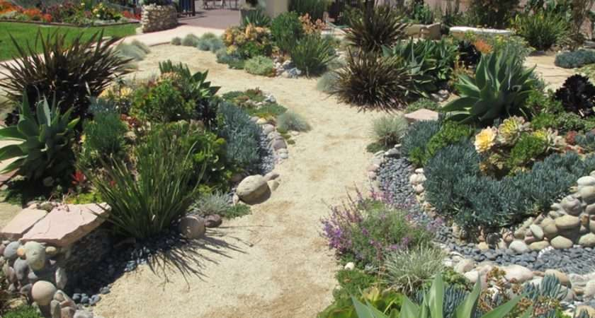 Dry River Bed Succulent Garden Waterwise Ideas Pinterest