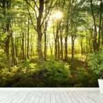 Enchanted Woodland Wall Mural Wallsauce
