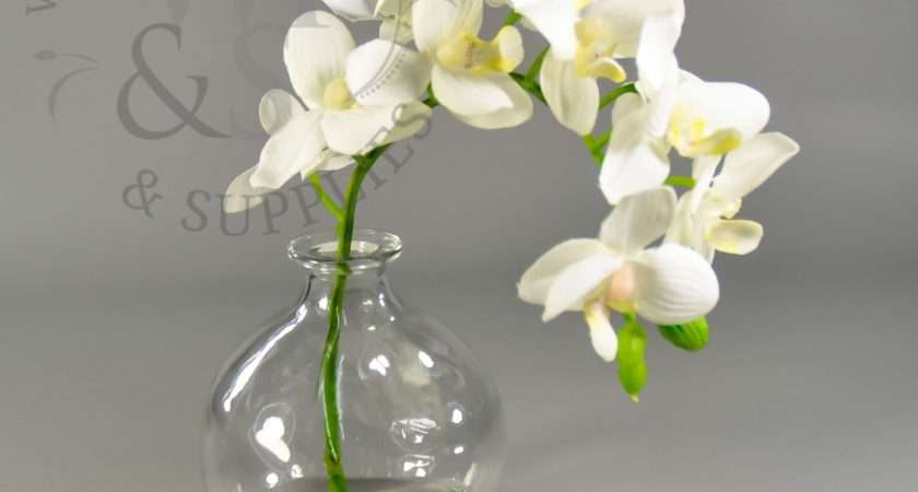 Faux Phalaenopsis Orchid Stem Glass Vase Wholesale