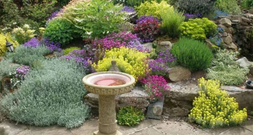 Garden Landscaping Here Gorgeous Small Land