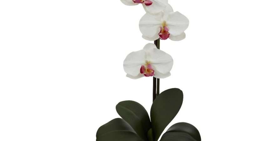 Giant Phalaenopsis White Orchid Silk Flower Arrangement
