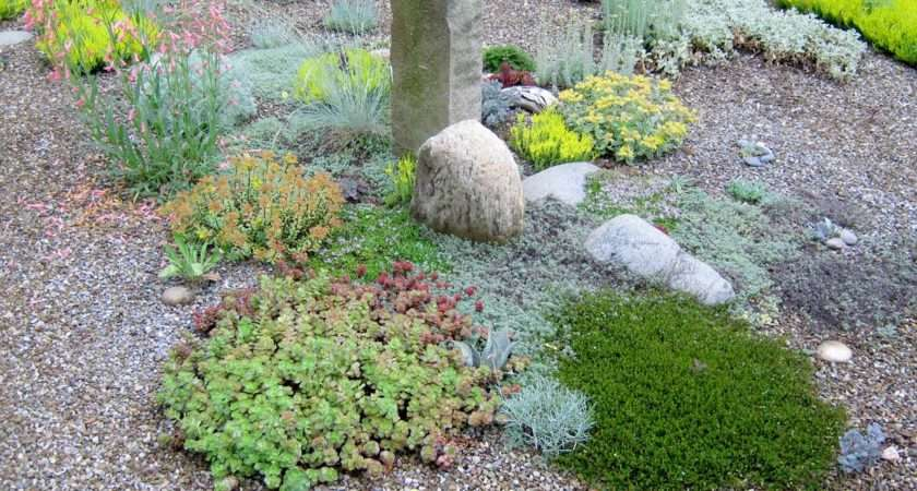 Gravel Garden Your Landscape Designs
