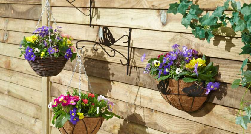 Hanging Baskets Add Colour Your Garden Tips