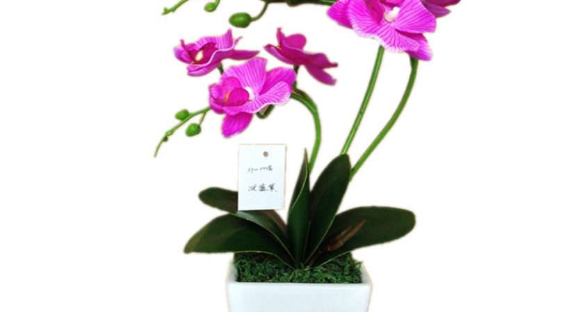 Hight Quality Artificial Orchid Flower Pot Silk Butterfly