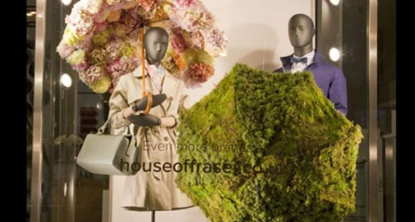 House Fraser Spring Sarah Feather Design Window Retail