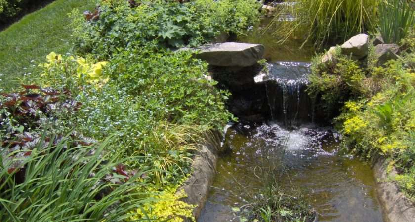 Ideas Garden Ponds Streame Small Water Feature