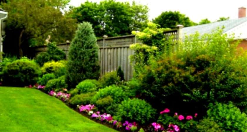 Landscaping Ideas Large Yards Budget Garden Front Yard