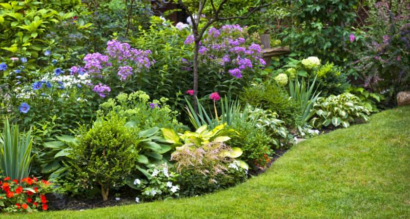 Landscaping Mistakes Destroy Your Yard