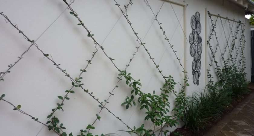 Large Wall Trellis Outdoor Decorations