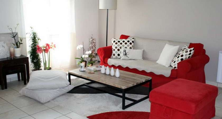 Living Rooms Decorating Color Schemes Red Sofa