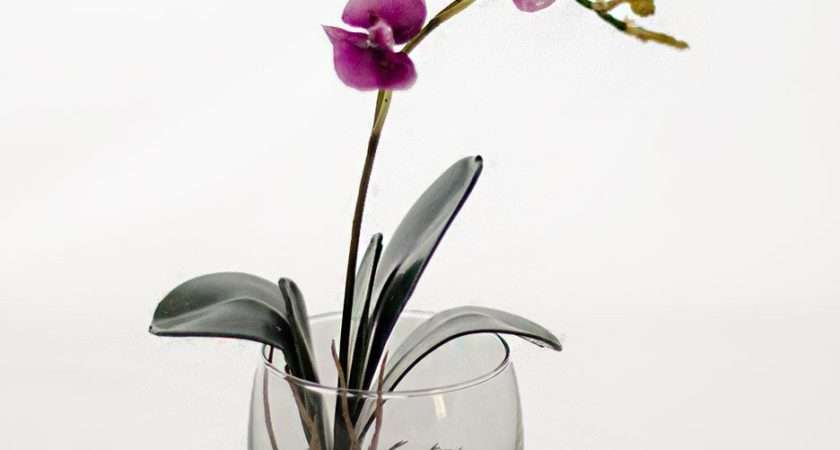 Mini Orchid Plant Glass Vase Artificial Faux Arrangement