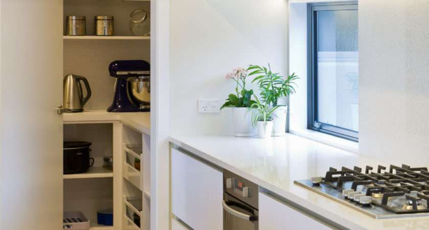 Modern Kitchen Pantry Ideas Try Now Interior God
