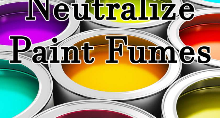 Neutralize Paint Fumes Eyeglass Helpers