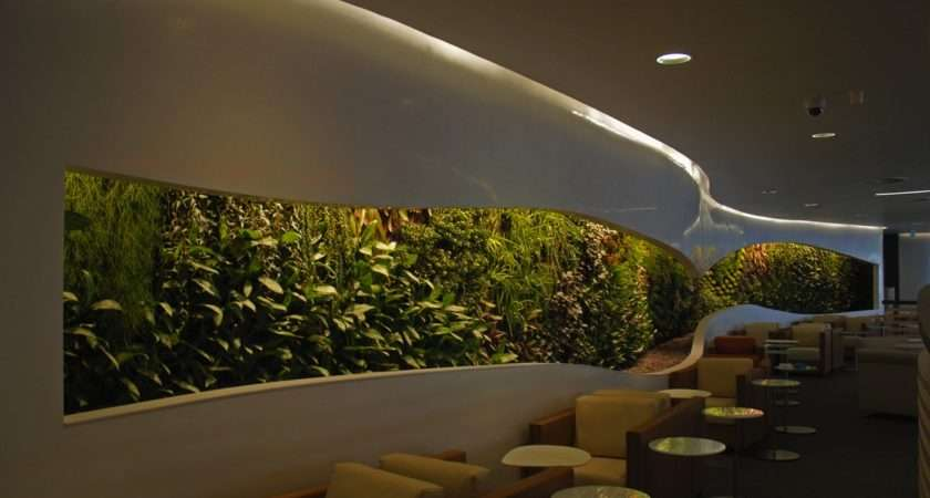 Office Waiting Room Vertical Garden Feature Wall Olpos Design