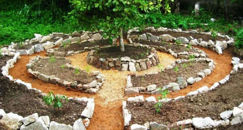 Permaculture Garden Greenmylife Anyone Can