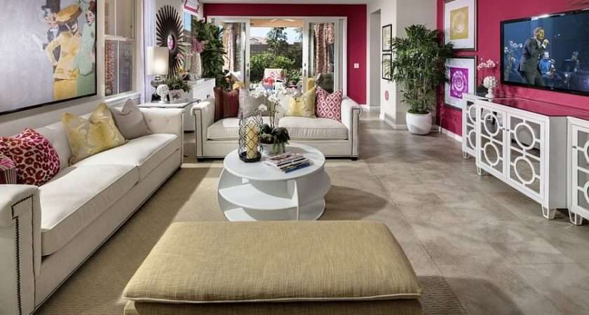 Pink Accent Wall Contemporary Living Room Design Studio