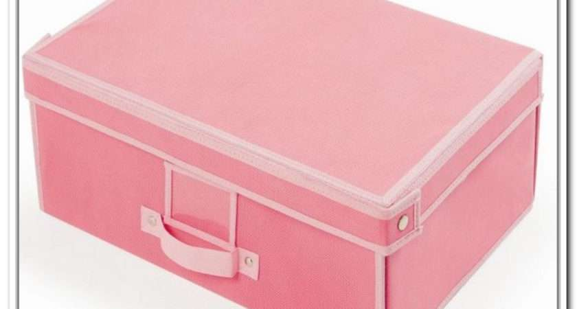 Pink Treasure Chest Storage Home Design Ideas