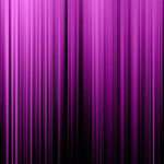 Plum Color Black Vertical Lights