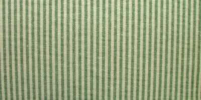 Prestigious Textiles Christmas Green Ticking Curtain