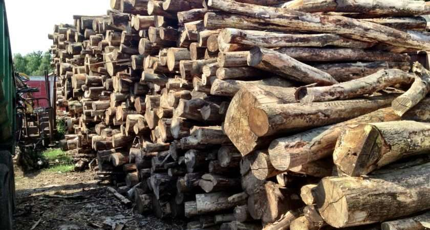 Prices Berkhamsted Logs Firewood