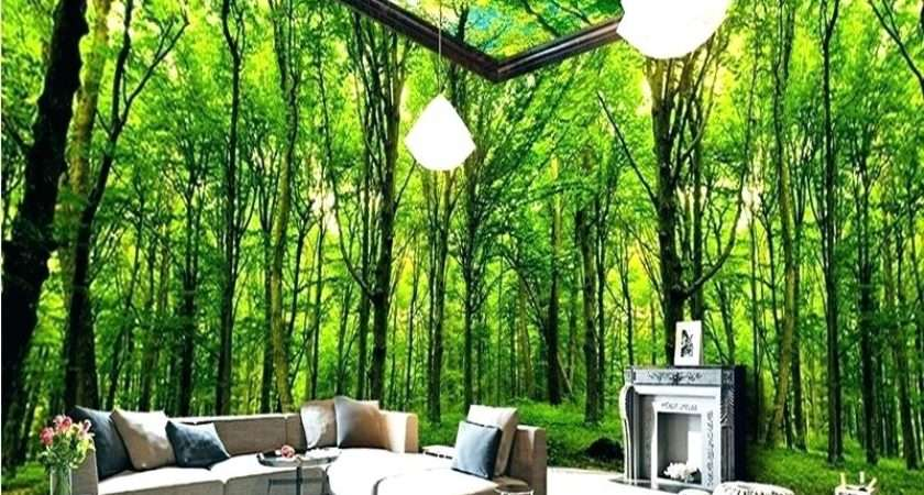 Rain Forest Themed Living Room Best Wiring Harness