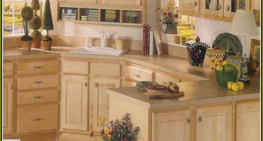 Replace Kitchen Cabinet Doors Lowes Home Design Ideas