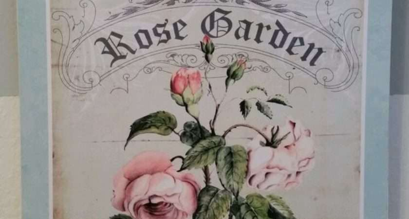 Rose French Shabby Country Cottage Chic Style Wall