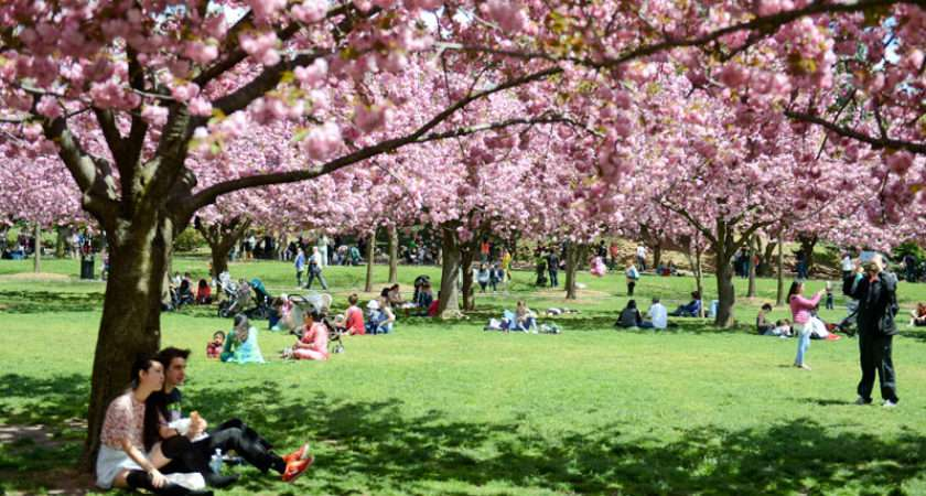 Spring Bucket List Nyc Parks