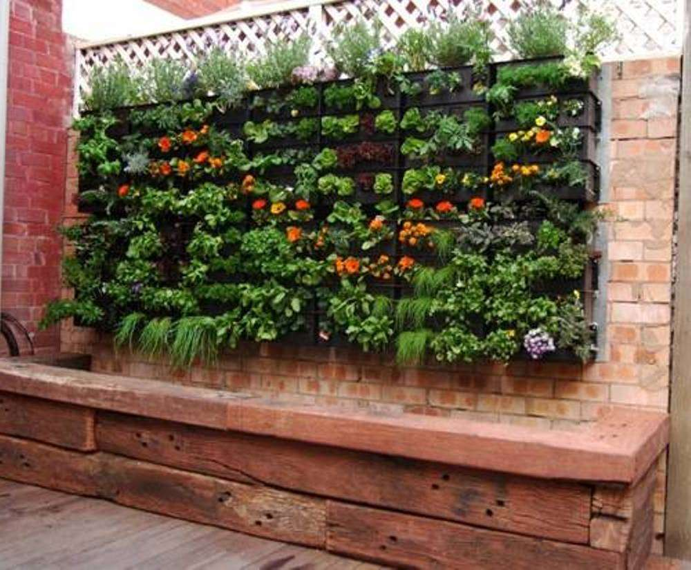 Start Vegetable Gardening Small Spaces