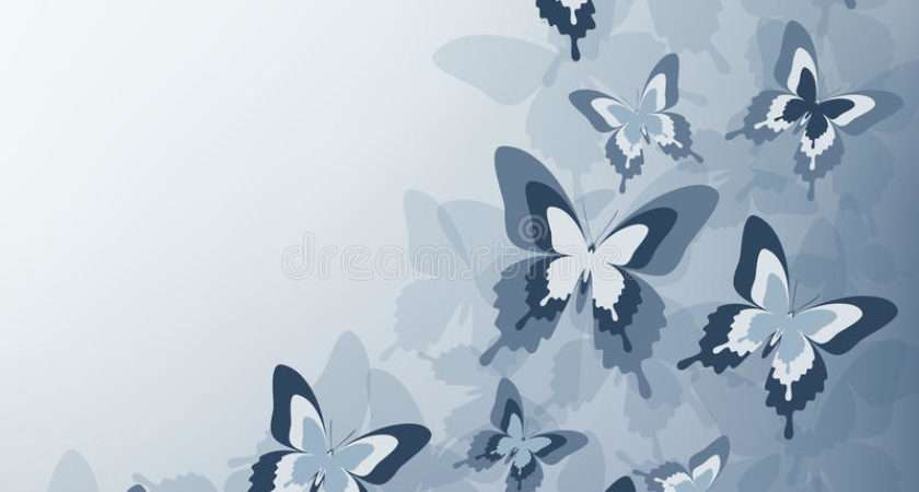 Stylish Grey Butterfly Vector