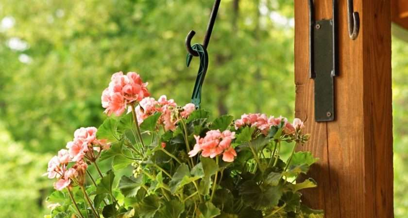 Support Water Hanging Baskets Hgtv