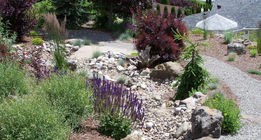 Synergy Landscape Design Feng Shui Xeriscaping