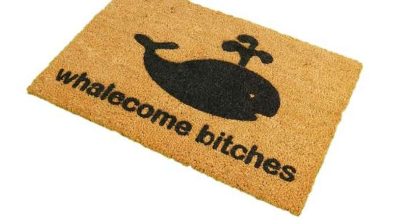 Top Best Funny Welcome Mats Your Easy Buying Guide