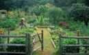 Unpolished Life Stunning Garden Designs Permaculture