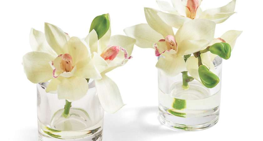 White Cymbidium Orchids Glass Vases Gump