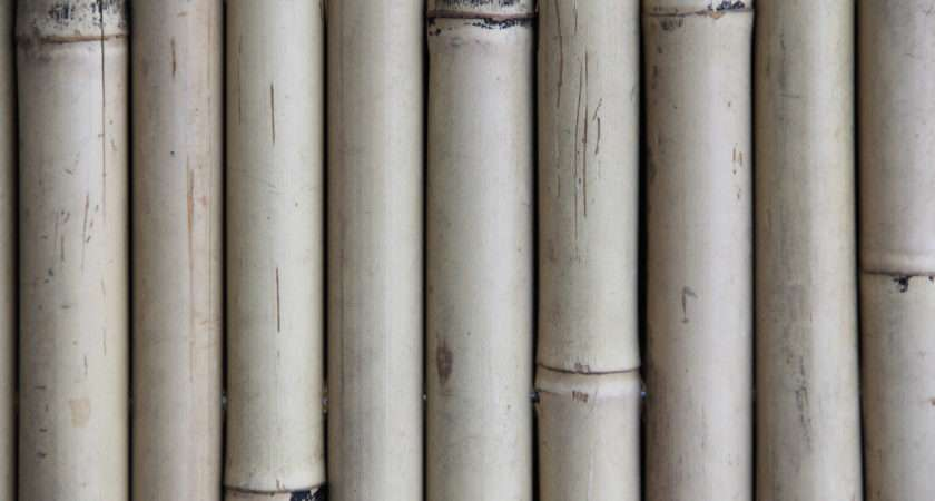 Wood Textures Bamboo Texture Natural Shaft Fencing