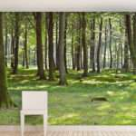 Woodland Forest Self Adhesive Wall Mural Contemporary