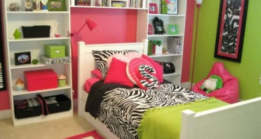 Zebra Room Decorating Ideas Dream House Experience